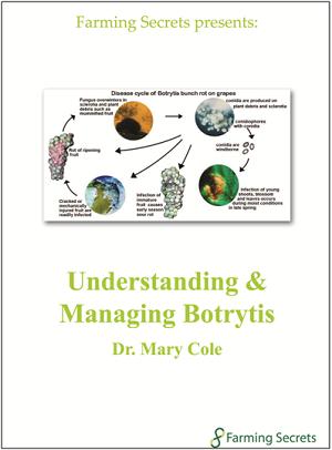 UnderstandingManagingBotrytis